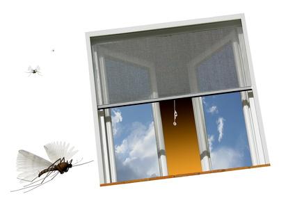 dans certaines zones la moustiquaire c 39 est plus de confort. Black Bedroom Furniture Sets. Home Design Ideas